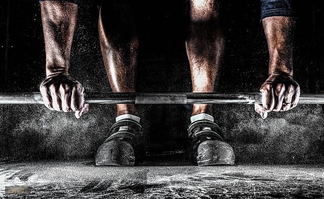 Leg Press Vs Squats: What's the difference?
