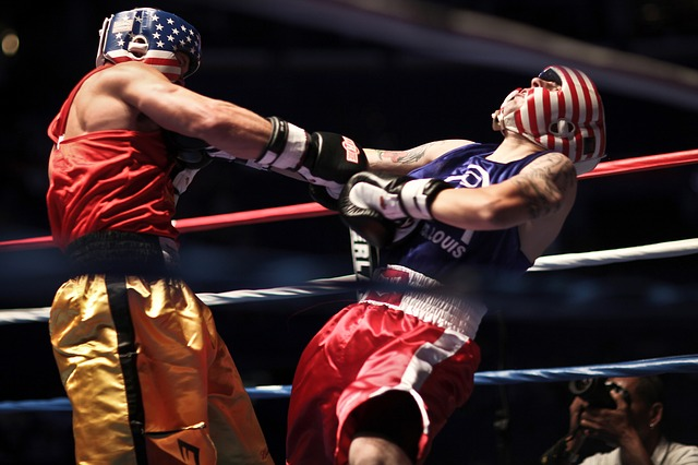 boxers-919232_640
