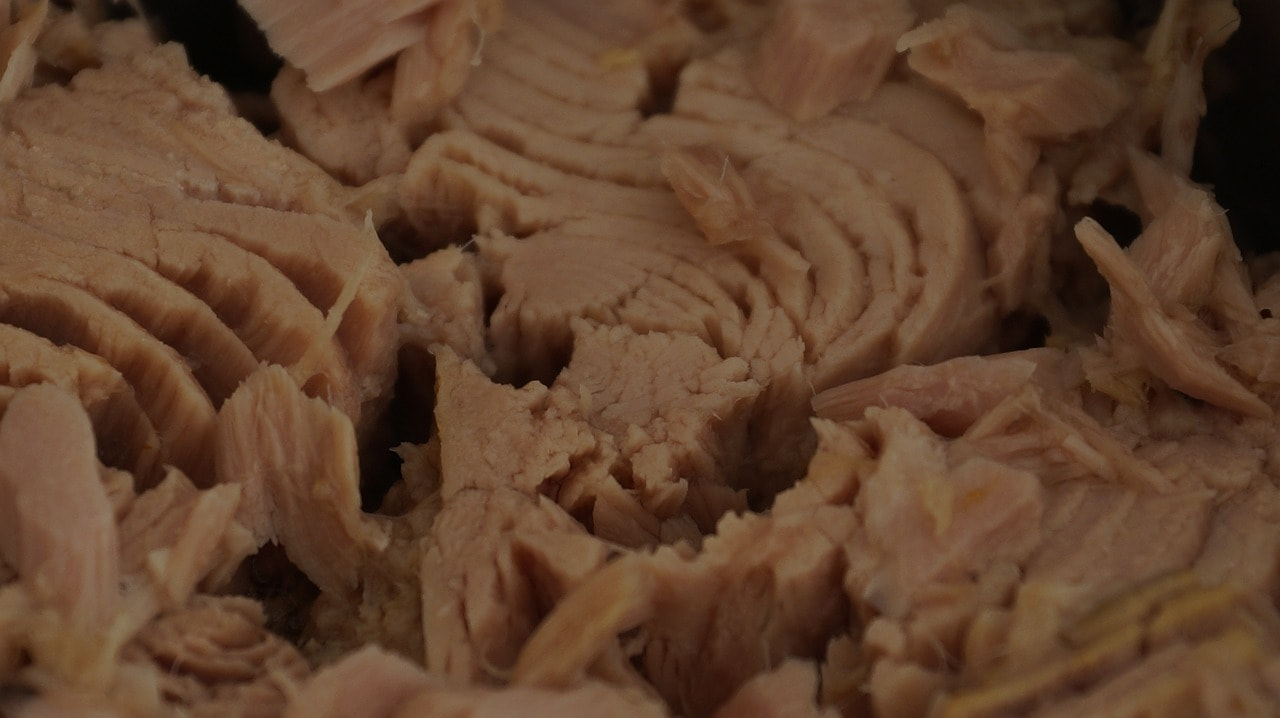 Why Canned Tuna is Awesome