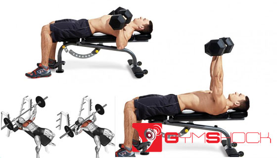 How-to-do-a-Bench-Press---Beginner's-Guide