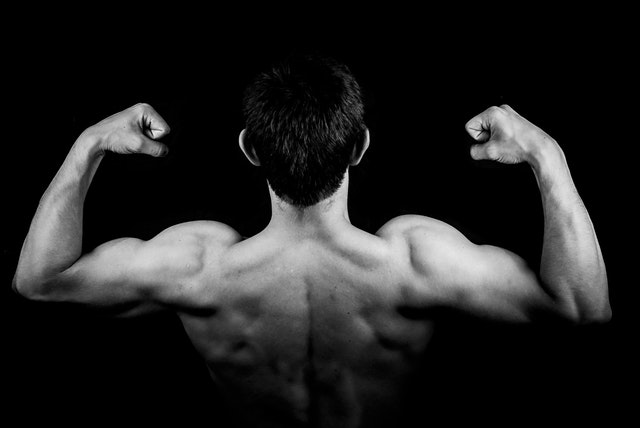 Horrible Muscle Building Back Workout